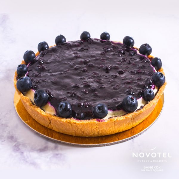Blueberry Cheese Cake2-1